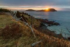 Lever soleil Tors Cove, Terre-Neuve (martinmenard757) Tags: golden levant torscove soleil lever ocean sunset newfoundland martin menard
