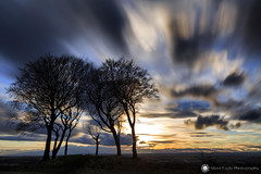 Seven Sisters round barrow, Copt Hill (Silent Eagle  Photography) Tags: bernacer sep silent eagle photography silenteaglephotography canon canoneos5dmarkiii sunset copthill sevensistersroundbarrow tree long longexposure sky clouds move slow orange outdoor northeast england sun night iso50 silhouettes