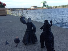 Bye Geese (splinky9000) Tags: kingston ontario canada day 2014 7114 fort frontenac godzilla gojira kaiju legendary pictures neca action figure toys godzillas adventures gandalf grey wizard lord of the rings hobbit gandalfs toybiz figures lego minifigure causeway bridge canadian goose geese