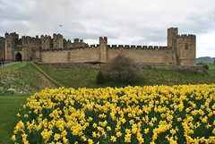 DSC_6616 (nordic lady) Tags: alnwick castle harry potter sightseeing england alnmouth holidays easter 2017