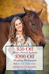 Spring Sale (J. David Buerk) Tags: virginia photographer dc northern dmv maryland fairfax fairfaxcounty loudoun county horse horses portrait senior portraits high school college graduation graduating class 2017