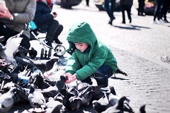 Feeding those pigeons (chloengng) Tags: amsterdam children boy pigeons sunny green netherlands europe asian outdoor playing birds