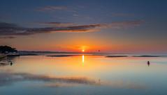 The Run Sunrise (nicklucas2) Tags: seascape sea seagull sun sunrise mudeford dorset lowtide buoy cloud reflection