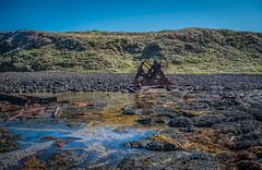 S.S. Speke Shipwreck at Low tide DSC_2454 (BlueberryAsh) Tags: april2017 kittymillerbay lowtide ssspeke shipwreck oceanseascape phillipisland nikond750 nikon24120 iron rust