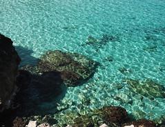 Aguas cristalinas (candi...) Tags: playa mar agua aguacristalina rocas mallorca naturaleza nature airelibre sonya77