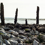 Wales coastal path Peterstone Wentlooge St Brides