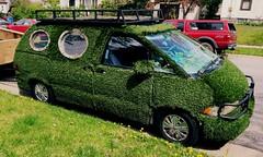 Shagmobile (edgoldstein007) Tags: green truck car minivan van flower garden lawn grass carpet astroturf artcar rug