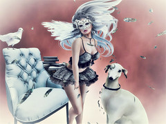 When Your Wildest Dreams Take Over (Sparkle Mocha) Tags: apple fall mandala zenith {anc} tableau vivant masquerade puppy reading chair oubliette wings wing feather dove bird maitreya avatar avie secondlife skirt top flowing hair mesh