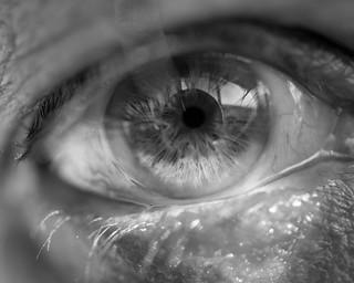 Self-Eye