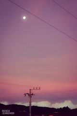 Sky, pink sky (Rafaah Machado) Tags: sky pink colors lua moon céu rosa corderosa t5i