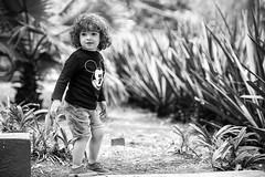 Chochis (Bravo Fotografia) Tags: baby boy niño kid bebe niños bebes babies cute gorgeous bell guapo chinos curly
