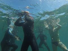 G0128111 (Visit Pilar de la Horadada) Tags: swimmers meeting point hibernismare swim natación nadar milpalmeras pilardelahoradada alicante costablanca vegabaja comunidadvalenciana quedada beach strand swimm