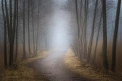 20170428_075002.jpg (jussidimitrijeff) Tags: mist helsinki vuosaari trail