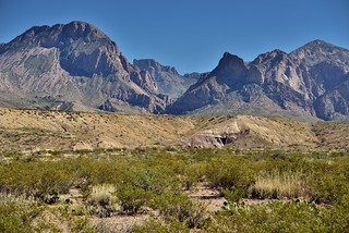 Rolling Hillsides Leading to Jagged Peaks (Big Bend National Park)