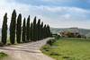 A9905807_s (AndiP66) Tags: agriturismoilrigo zypressen cypresses sanquiricodorcia sanquirico dorcia siena pienza valledorcia valle toscana tuscany italien italy sony alpha sonyalpha 99markii 99ii 99m2 a99ii ilca99m2 slta99ii tamron tamronspaf70200mmf28dildif tamron70200mm 70200mm f28 amount andreaspeters