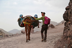 completely relaxed (vil.sandi) Tags: completelyrelaxed trekking mountain highatlas hoheratlas imlil girls donkeycarry toubcal