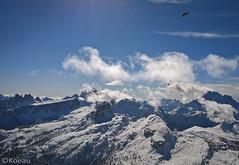 Of Air and Snow (Koeau) Tags: cortina mountain air snow winter crow bird altitude cloud blue sky ski snowboard neve inverno dolomites dolomiti montagna landascape paesaggio view tourism hike peak