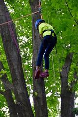 DSC_1261 (Montgomery Parks, MNCPPC) Tags: popupinmontgomeryparks bethesda treeclimbing climbatree tree climbingtrees kids children boys girls arborists elmstreeturbanpark spring may may2017 leaves treetrunks toddler