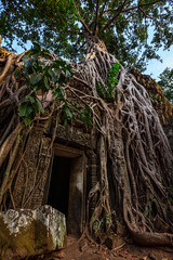 Over grown doorway, Ta Phrom Temple, Angkor, Cambodia (Kenneth Back) Tags: jungle morning canon5dsr sunrise siemreap canon landscape colors ancient cambodia angkorwat temple taphrom krongsiemreap siemreapprovince kh