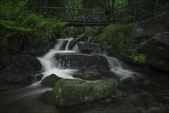 Regreso al paraíso (Explore) (Jose Cantorna) Tags: paisaje nature waterfall water nikon d610 cascada bosque