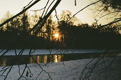 000029950022 (8424fearZespri?) Tags: canon canona1 city colorful christmas cinematic composition sunny sunset landscape nymphenburg germany deutschland münchen munich tree nature outdoor kodakgold200 kodak shootingfilm