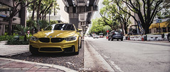 BMW M4 X MIAMI (Samuel k bry) Tags: bmw m4 miami downtown bridge panasonic gh4 m43 microfourthirds light dailight yellow vivid sigma 1835 1835mm f18 natural cars automotive photography metabones speedbooster vroom f82 exhaust facelift front horsepower fast stance stanceworks lowisalifestyle fresh freshness