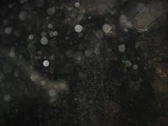 Tamuy_Behind escenes_20 (DiegoD (Photo&Cinema)) Tags: diegoalbertodíazgarcía ©diegod liderazgo filmmaker emprendedor 2017 empoderamiento mlm ahora exito sabiduria bienestar equilibrio mente cuerpo espíritu holistico psicología coach coaching abundancia lamejorinformación elser crecimientopersonal espiritualidad sueños vida vivesinlímites programaciónmental riqueza crack colombia joven youngmillionaire ym enseñabilidad fotografo photographer amazingguy sexi nice amable agradable portrait retrato