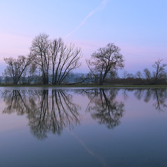 (philippe baumgart) Tags: alsace ried square muttersholtz flood landscape paysage symmetry carré