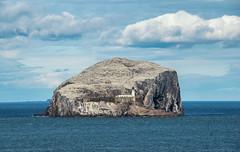 Gem of the Scottish Coast (hajnalkaberenyi-kiss) Tags: bassrock scotland landscape seascape hiking lighthouse coulds nature
