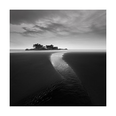 Follow your dreams (Nick green2012) Tags: palm trees island blackandwhite square longexposure beach