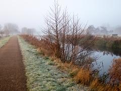River Lea, Hertfordshire-1020874 (chrisyatesuk) Tags: hertford kingsmead autumn earlymorningsun hertfordshire landscape towpath