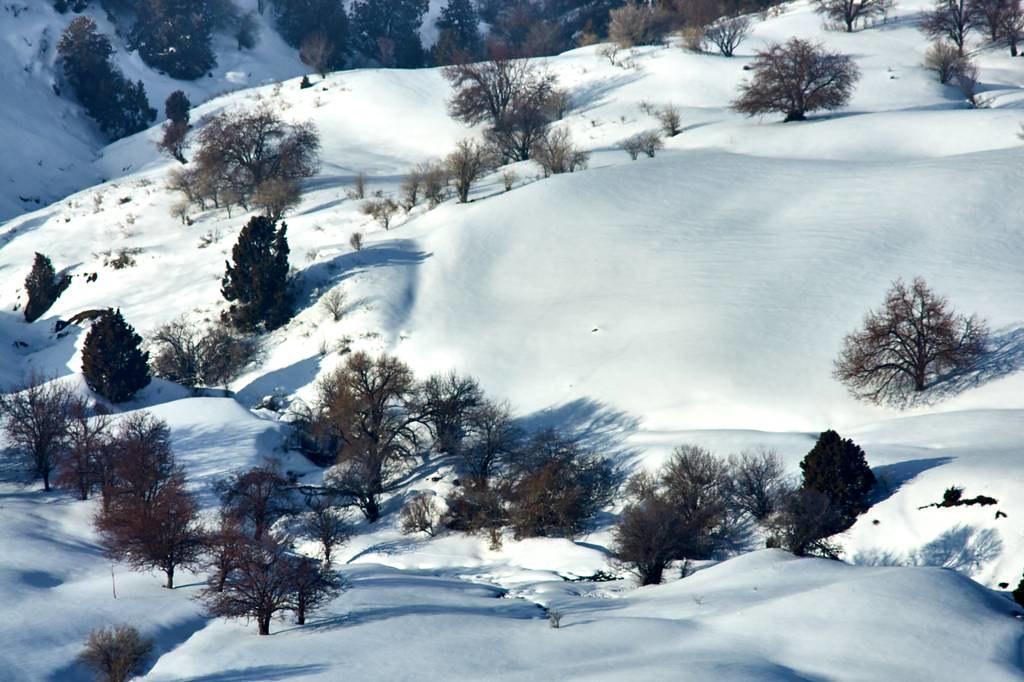 the world 39 s best photos of uzbekistan and winter flickr. Black Bedroom Furniture Sets. Home Design Ideas