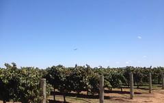 Farm 548B Moseley Road, Bilbul NSW