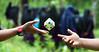 Rubik's Cube (AnNamir™ c[_]) Tags: annamir rubik cube cuber speedcube canon 5dmk3 freeze candid rubikscube transkem kualakubu cubing explore