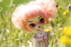 Grenadine (Naekolyset) Tags: pullip dal daldoll doll dolls dalmaretti angelicpretty junplanning groove toy sparkles shoes redhead ginger child nature green curlyhair eyebrows ooak makeup shorts path sun bokeh portrait toys