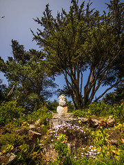Bust from Thames Wreck Tresco 17 (davidmcbridephotography) Tags: red tresco gardens isles scilly cornwall united kingdom sea water flowers exotic plants succulents escapees landscape sky olympus mcbride dynamic portrait travel holiday destination estate