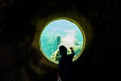 Knock Knock Waterworld ! (marcin baran) Tags: kid child children play water aquarium poland polska fuji fujifilm fujix100 x100 x100t street people candid candidphotography human wroclaw zoo