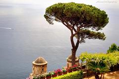 Ravello, the hidden treasure of the Amalfi Coast (2) (jackfre 2) Tags: italy amalficoast ravello jewel views hills parasoltrees