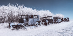 Infrared Traffic Jam (burntpixel.ca) Tags: canada manitoba winnipeg photo photograph rural fine art patrick mcneill burntpixel wrench777 beautiful spectacular canon landscape horizontal nature travel wander prairie panorama wide stitched automobile car truck infrared blue white monochrome old historic abandoned decay forgotten xs canonxs