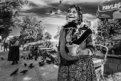 Wheat for pigeons (Mustafa Selcuk) Tags: 2017 edirne fujifilm travel turkey street streetshooter streetphotographer streetphotography monochrome monochromatic blackandwhite bnw bw fujifilmtr xpro2 woman elderly