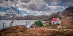 Perfect place ..... (Einir Wyn Leigh) Tags: landscape love passion rural cottage lake scotland digital path air sunlight light happiness joy