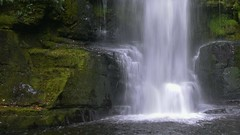 Always a lot of water in the rainforests.... (rosch2012) Tags: waterfal rainforest regenwald newzealand