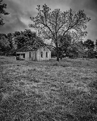 Old House In The Pasture (Mike Schaffner) Tags: abandoned bw blackwhite blackandwhite clouds decay decayed derelict deserted dilapidated home house monochrome old pasture ruins trees willowsprings fayetteville texas unitedstates us