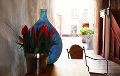 Patio With Blue Vase And Red Tulips (macplatti) Tags: xt10 xf1855mmf284rlmois vase amphora blue red tulips urban innenhof city chair light feldkirch vorarlberg austria aut