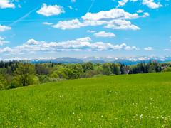 Höhenschäftlarn (Wolkenkratzer) Tags: alps mountains föhn höhenschärftlarn schäftlarn bavaria bayern grassland wood