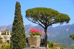 Villa Cimbrone, Ravello - Italy (jackfre 2) Tags: italy gardens hotel views ravello villacimbrone domain amalficoast