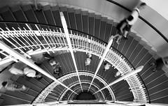 Staircase Symmetry (CoolMcFlash) Tags: staircase stairs people walking motion blur view perspective pov bnw bw blackandwhite blackwhite vienna architecture symmetry symmetrie symmetrisch beamtenstiege openhouse 2016 psk postsparkasse stiegenhaus treppenhaus stiegen treppen personen gehen bewegungsunschärfe perspektive blickwinkel highangleview sw schwarzweis wien architektur canon eos 60d sigma 1020mm 35 geometrie geometry