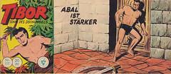 Tibor 117 (micky the pixel) Tags: comics comic heft piccolo vintage abenteuer dschungel jungle walterlehningverlag hansrudiwäscher tibor sohndesdschungels kerker schwert schild wikinger