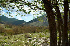 Aurunci Mountains springtime (The Man in the Maze) Tags: vallyofpolleca polleca auruncimountains nature wilderness southpontino italy lazio mountains hill hills