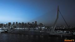 Pont Erasmusbrug la nuit, Rotterdam, Hollande - 2395 (rivai56) Tags: pont erasmusbrug night nuit rotterdam hollande
